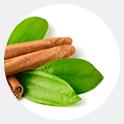 Olej z liści cynamonowca cejlońskiego