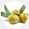 Olej z liści oliwki europejskiej